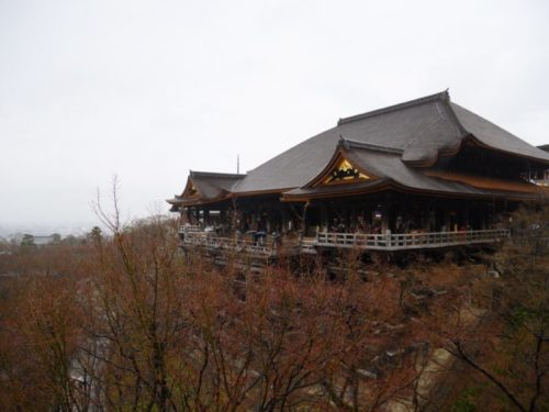 2020年2月下旬の清水寺の様子。生憎の雨でしたが4年間の改修工事期間を終え、美しい姿が現れました。