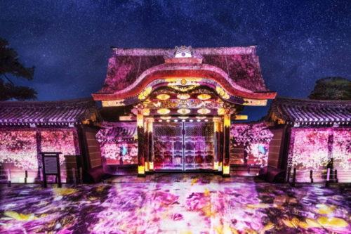 二条城の桜まつりイメージ