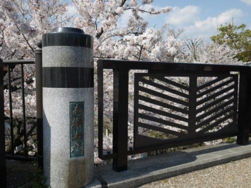 南禅寺橋と桜