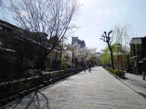 天気が良い春の祇園白川