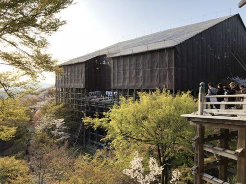 2018年春の清水寺本堂の様子。檜皮葺き屋根の葺き替え工事のために覆いがかけられています。