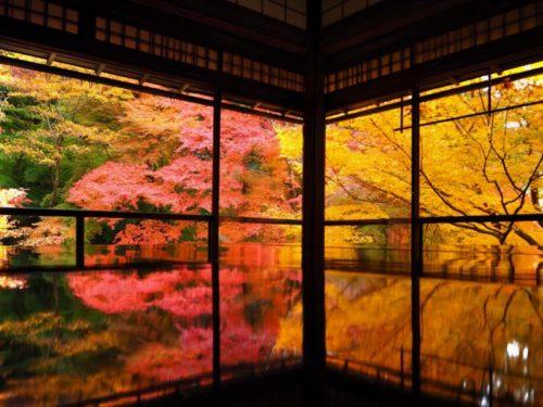京都駅から瑠璃光院へのアクセス方法