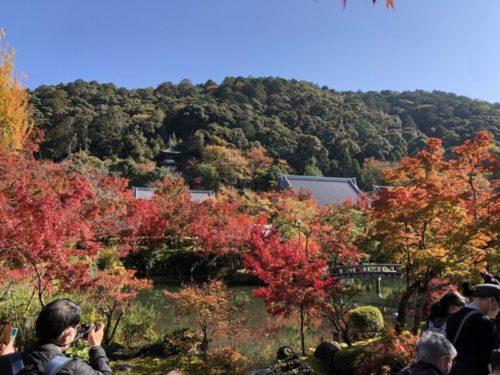 永観堂の秋の景色2020年11月15日