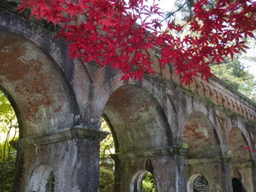 南禅寺の水路閣2020年11月15日
