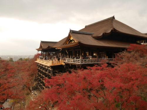 平成の大修理後の清水寺の美しい姿 2020年12月12日